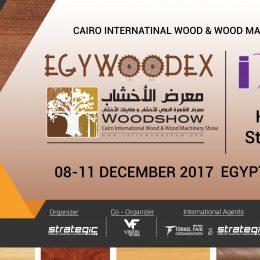 Egywoodex Fair Participation